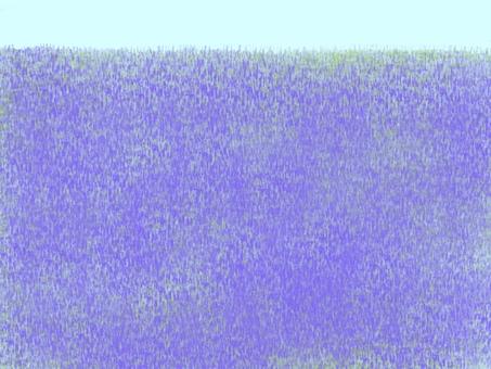 One side flower lavender