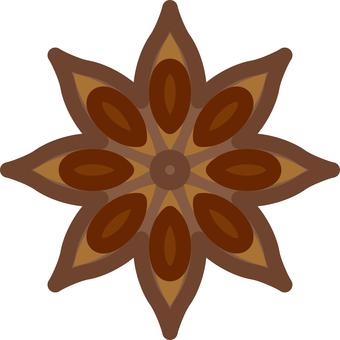 Octagonal star anise spice spice