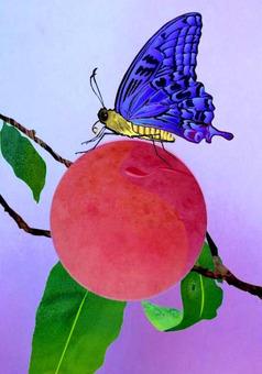 복숭아에 그칠 나비