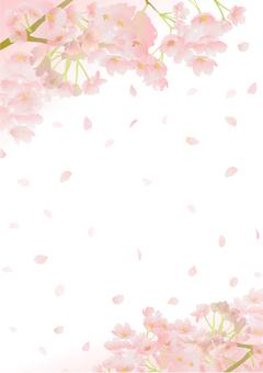 Cherry Blossoms Frame 48