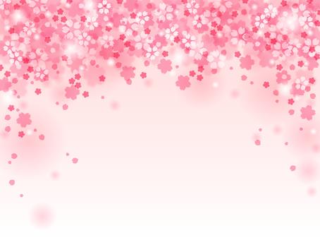 Sakura 86