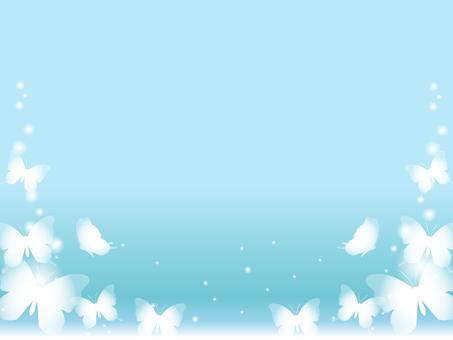 나비의 배경