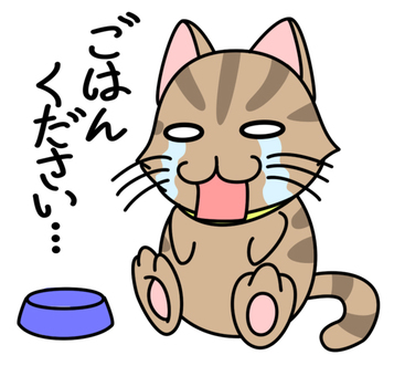 Shock cat 2
