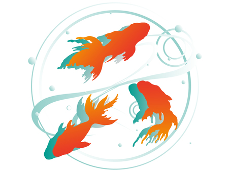 Goldfish pattern