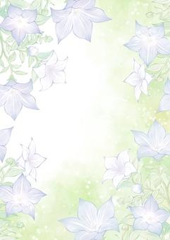秋の七草の桔梗