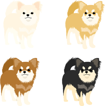 Chihuahua icon set 3