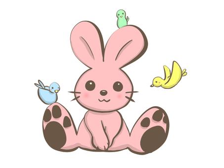 토끼와 작은 새들