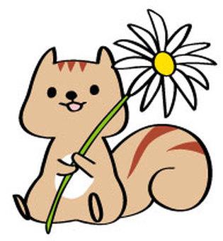 흰 꽃과 다람쥐 소리