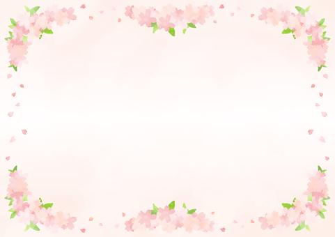 Cherry blossoms frame 12
