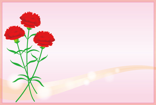 With carnation background