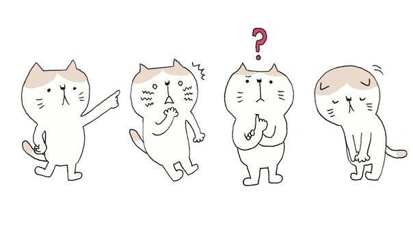 Cat pattern set 1
