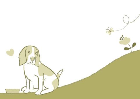 dog_ Beagle dog 18