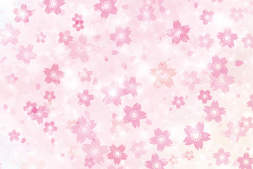 Cherry blossom petal Hirahira Spring fragrance