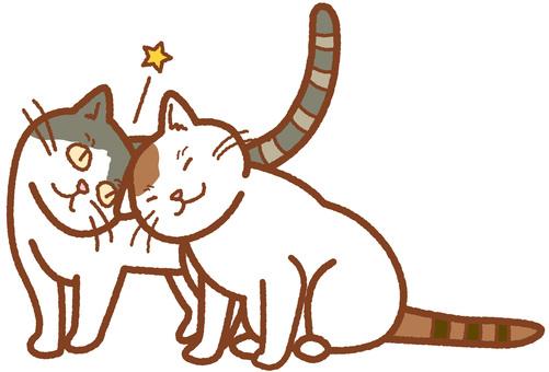 Cat's greetings