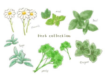 Various plants Vol.1