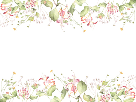 Flower frame 195 - Honeysuckle and flower frame of field