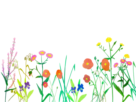 Spring roadside flower frame