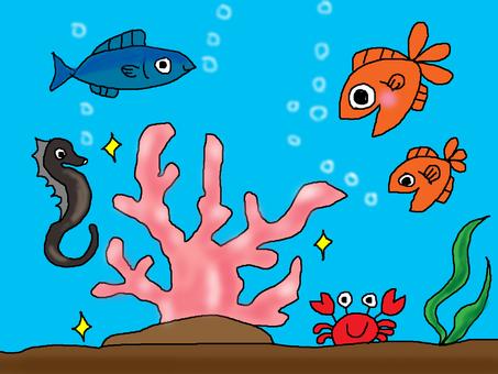 바다 속 세상