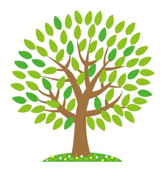 One big green tree