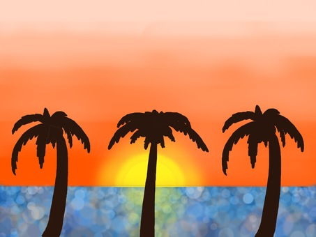 Summer ☆ Tropical sunset