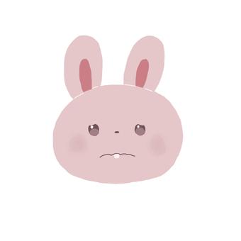 토끼 슬픈