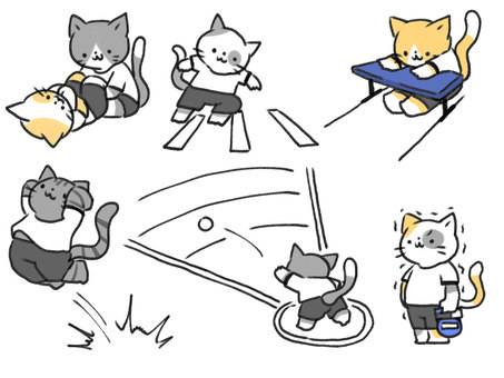 Cat taking a physical fitness test