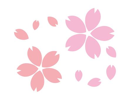 Sakura Sakura的插圖線無