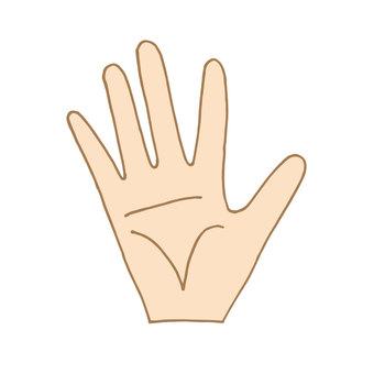 Pal palm