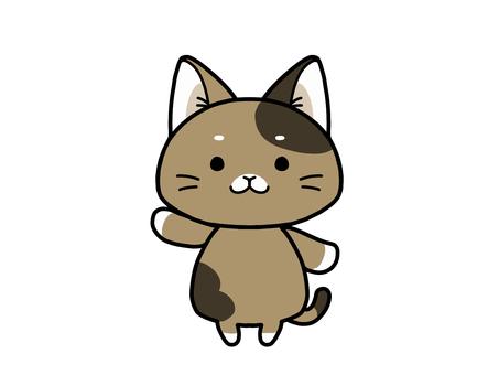 Bukkake cat