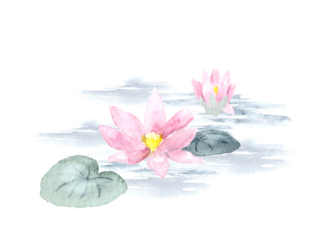 Lotus flower drawing with watercolor Water lily