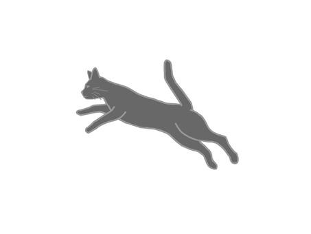 Cats, jumping 02