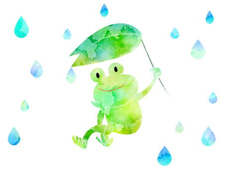 Frog ver01