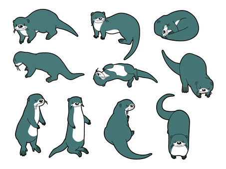 10 kinds of otters