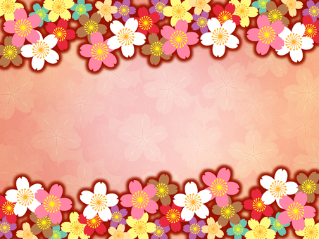 Background - Cherry Blossoms 50