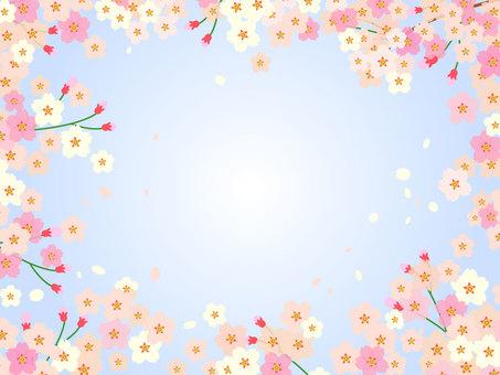 벚꽃과 빈 프레임