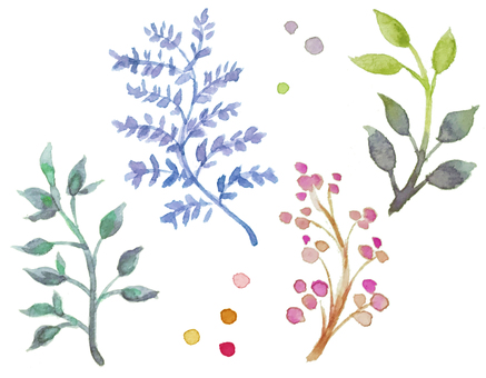Watercolor plants-4