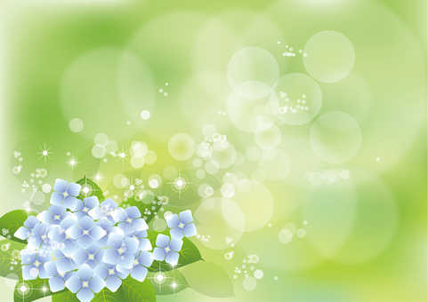 Green & hydrangea 4