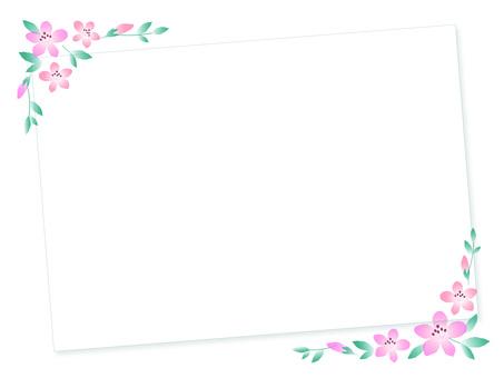 23. Azalea board