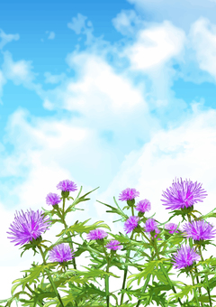 Thistle Background (Vertical)