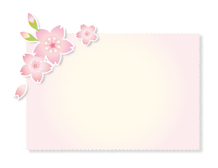 Cherry blossoms and bud cards