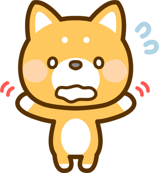 Shiba Inu panicked