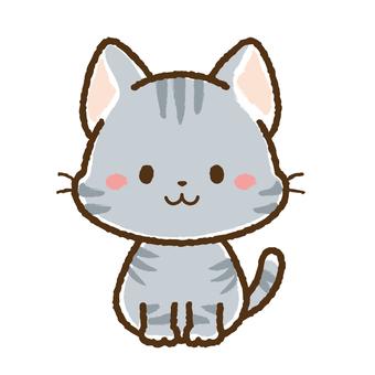 Sayara灰色