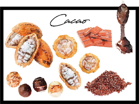 Cacao and chocolate watercolor set