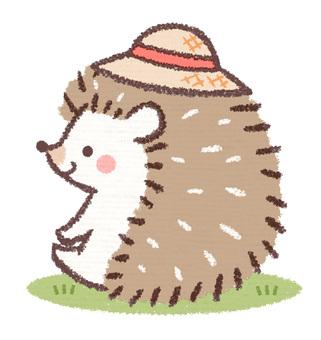 Hedgehog sitting in a straw hat