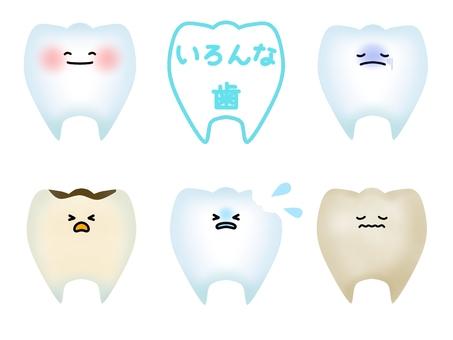 여러 치아의 캐릭터 (윤곽선 없음)