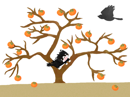 Cats and persimmon trees
