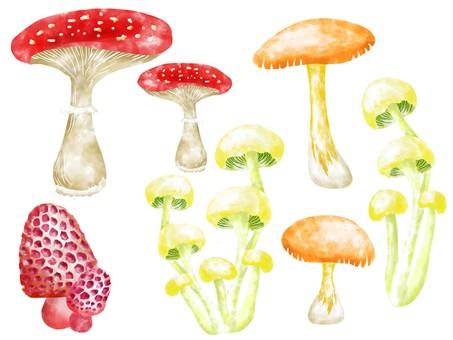 Watercolor paper cut mushroom