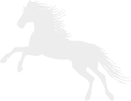 Horse (cs2)