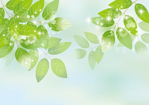 Glittering leaves & sky 21