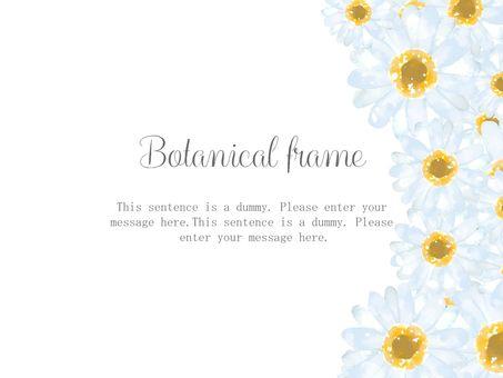 흰 꽃 프레임